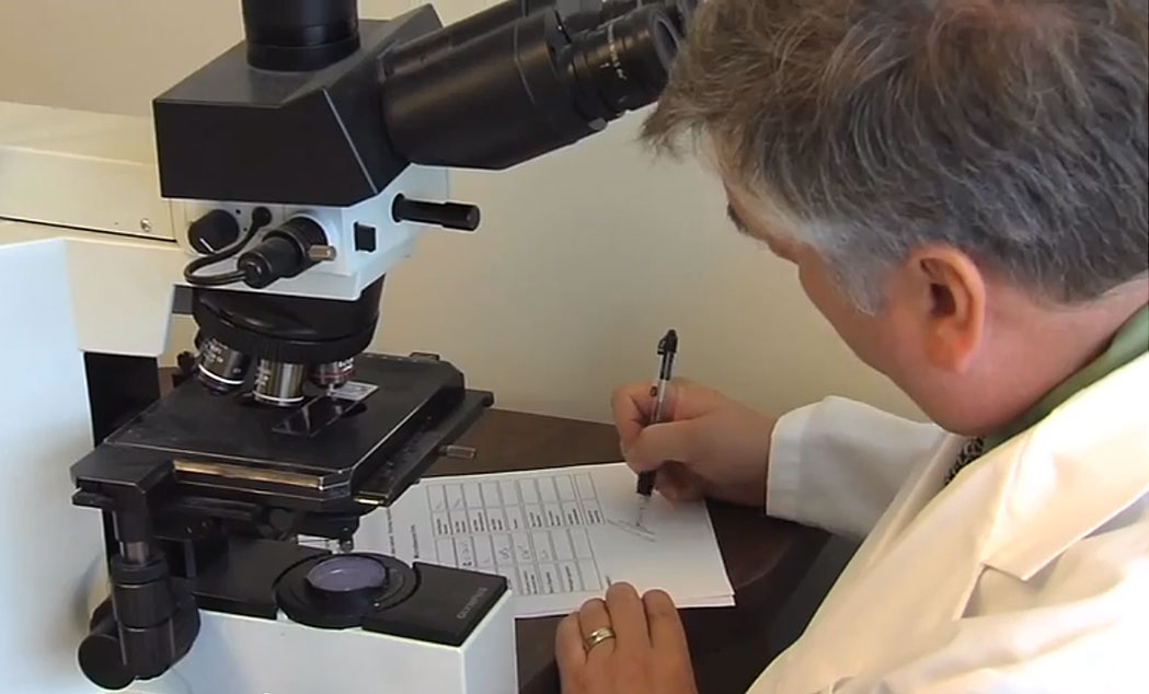 What is Precision Cancer Medicine?